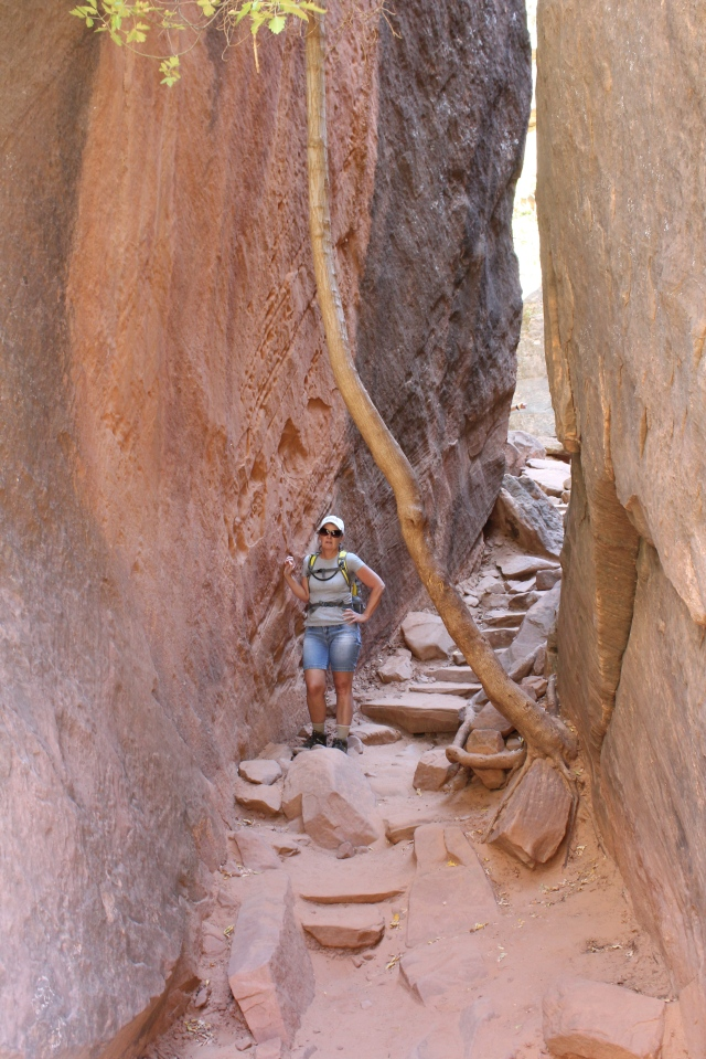 Jeanne trucking along on the trail to the Emerald Pools.