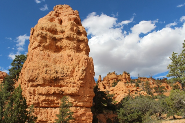 As we started out on the Arches Trail...