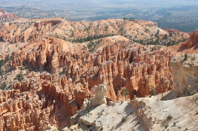Magnificent! Lots of views at Bryce Point!