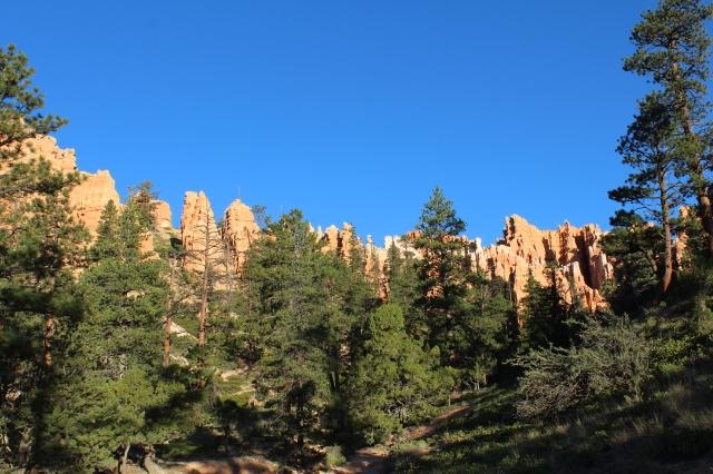 Some Navajo Loop scenery