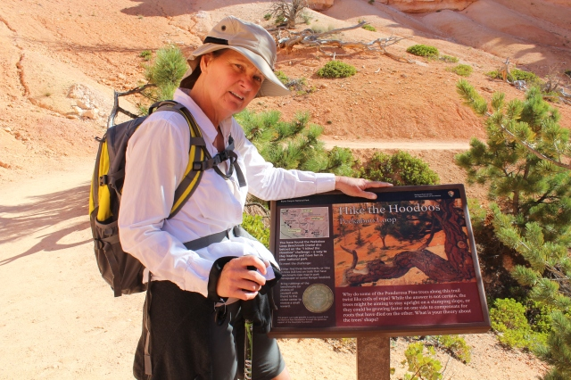 "One more trail marker from ""Hike the Hoodoos"", this for the Peek-a-Boo Loop"