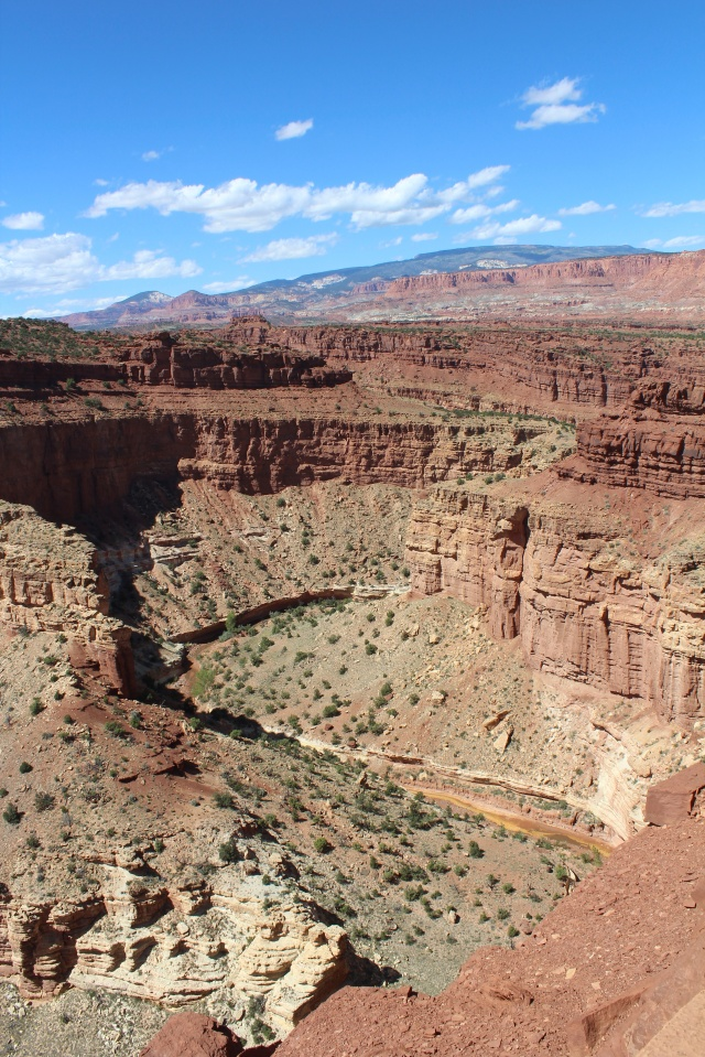 A look down at the Goosenecks, Capitol Reef NP