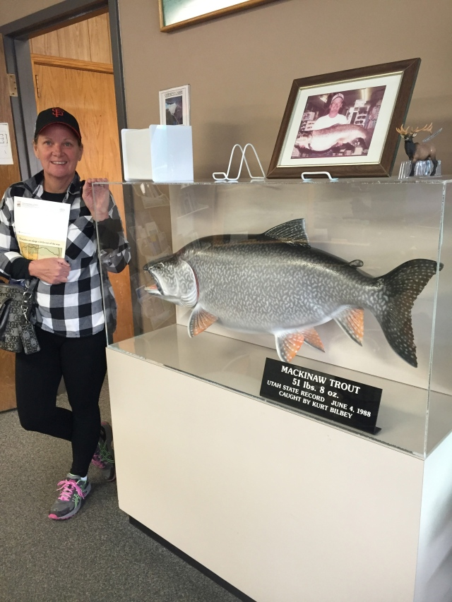 Just a stopover at the Dam and Visitor Center to see what kind of baitfish they keep on display…holy moly!