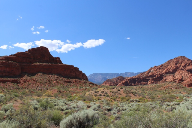 Some of the Red Cliffs