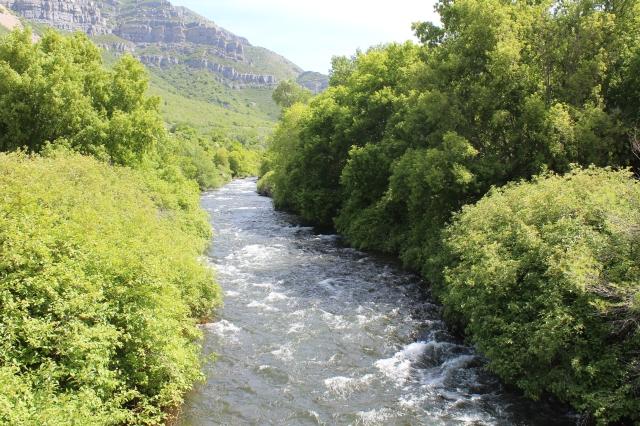 The Provo/Jordan River near Bridal Veil Falls.
