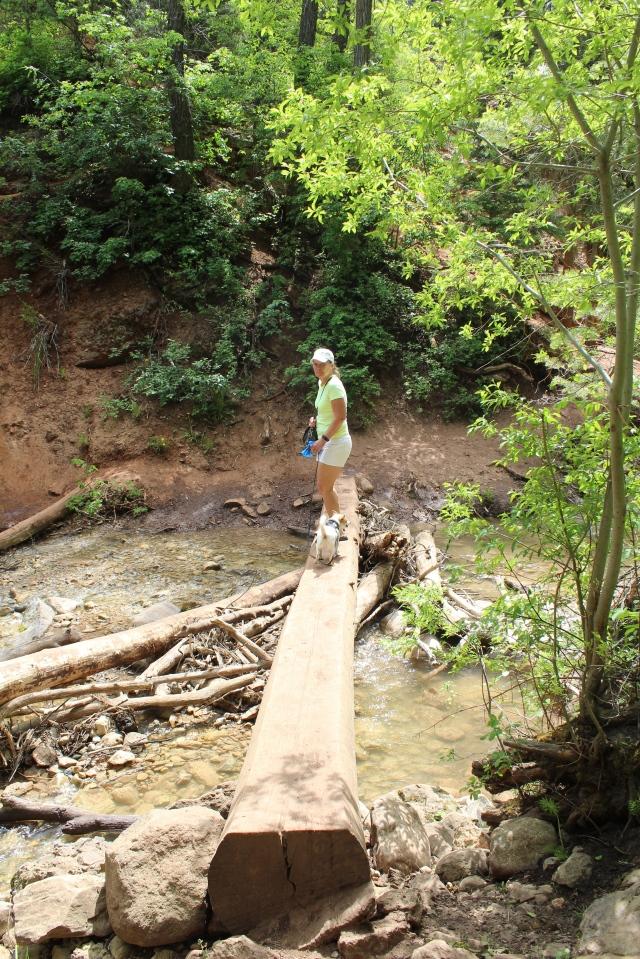 Balance beam bridge across the creek.