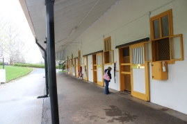 The stallions' barn.